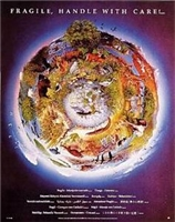 Fragile Earth Laminated Poster