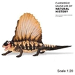 Dimetrodon Carnegie Collection Dinosaur Toy Model