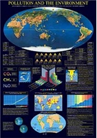 Pollution & The Environment Poster