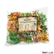 Safari Dinosaurs Bulk Bag Replica Models 48 pieces