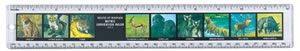 World of Animals Ruler, animals ruler, ruler of animals, kids wildlife animals ruler, childrens