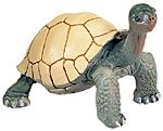 Wild Safari Wildlife Tortoise Replica Toy Model