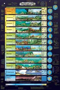 Eras of Life Poster (Laminated)