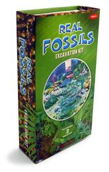 Fossil Exploration Dig Kit