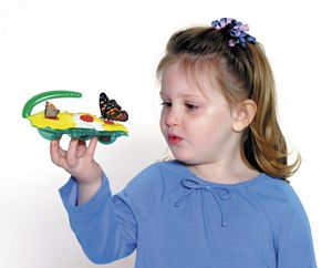 Butterfly Feeder Kit - bug catcher - bug toys