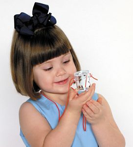 Little Bug Locket Toy - bug catcher - bug toys
