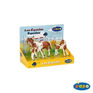 Papo Pinto Horses Display Box