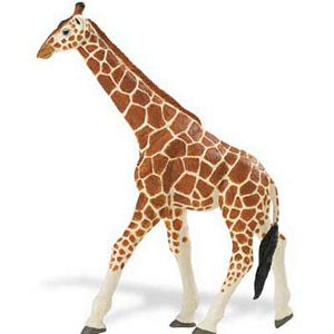 Wildlife Wonders Safari Reticulated Giraffe Toy Model