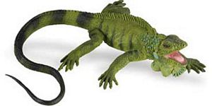 Wild Safari Safari Green Iguana, rubber iguana. ignuana replica toy model