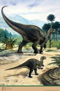 Iguanodon and Baby Poster-Laminated Rolled and Sleeved