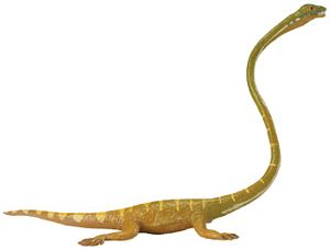 Tanystropheus Carnegie Collection Toy Model, dinosaur toys, dinosaur toy, dinosaur model