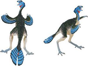 Carnegie Dinosaur Collection Caudipteryx Toy Model