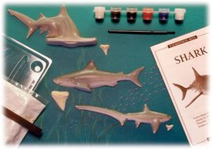 Shark Eyewitness Kit