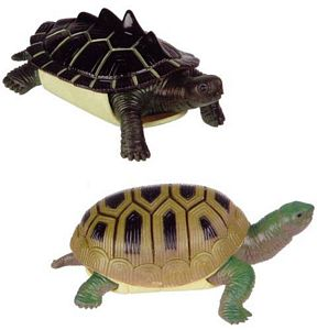 Turtle Squishimal toys by toysmith, squishy reptile toys, squishy Turtle replica, kids soft Turtle t