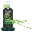 Glow-In-the-Dark Test-Tube Pteranodon Dinosaur Skeleton Toy