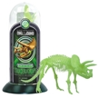 Glow-In-the-Dark Test-Tube Triceratops Dinosaur Skeleton Toy
