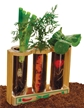 Root Viewer Garden, kids root view garden. garden toy, childrens plant viewer, kids gardening toy