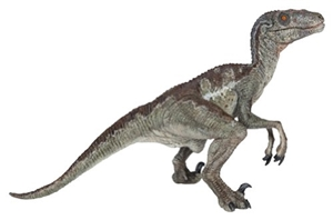 Papo Dinosaur Velociraptor Model w/articulated jaw Toy Model